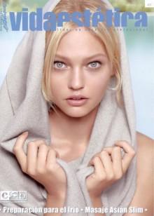 Revista Vida Estetica Diciembre 2010 Nº 401