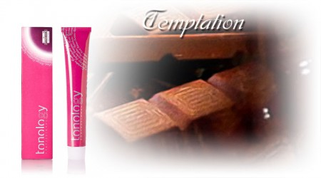 Tonology Hair Dye Colour Temptation