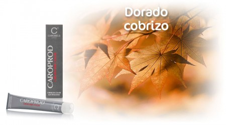 Caroprod Hair Colour. Cooper Golden